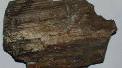 Aυτεπάγγελτη έρευνα για την κλοπή πετρωμάτων στη Λέσβο