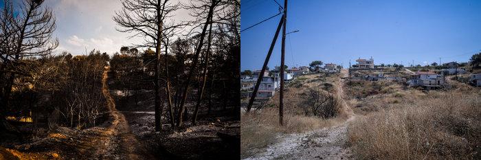 Μάτι: Ένας χρόνος μετά - Το χρονικό της μεγάλης τραγωδίας - εικόνα 8