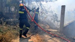 Υπό μερικό έλεγχο η φωτιά στην Ιερά μονή Καρακαλά Ναυπλίου