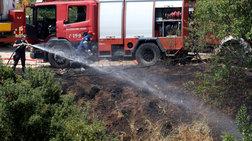Υπο μέρικο έλεγχο η πυρκαγιά στον Κοκκιναρά Κηφισιάς