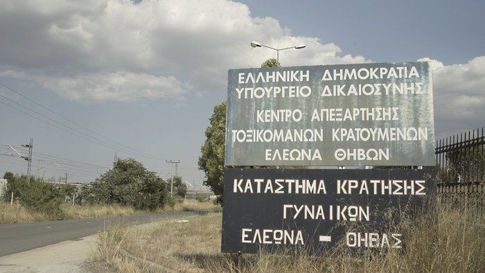 Πρόγραμμα-Σταθμός: Κρατούμενες εκπαιδεύουν αδέσποτα στη Θήβα