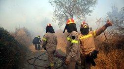 Φωτιές σε Βαρδαλή και Βούζι στο Δομοκό