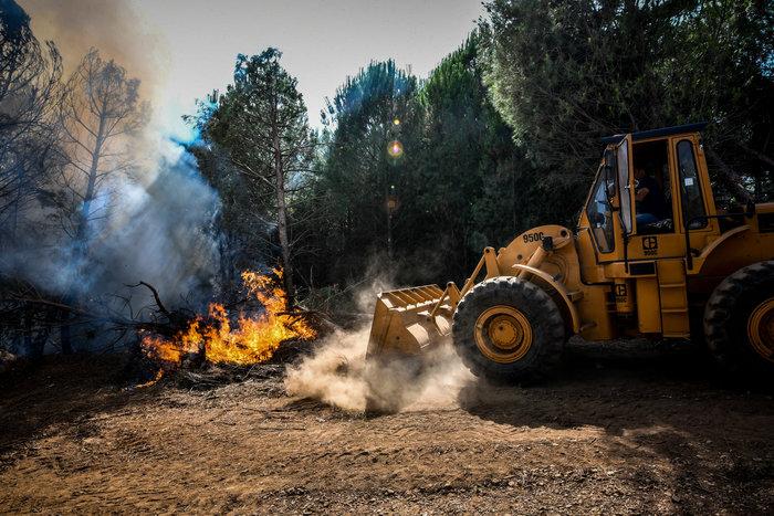 Απαγόρευση κυκλοφορίας σε δάση & συνεχείς περιπολίες: 44 πυρκαγιές σήμερα