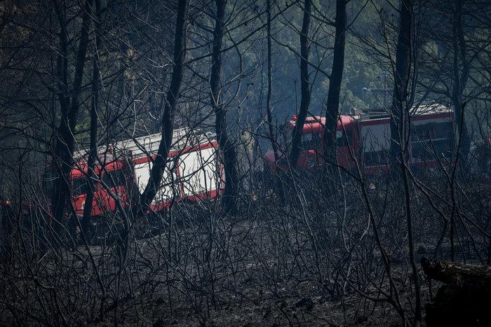 Απαγόρευση κυκλοφορίας σε δάση & συνεχείς περιπολίες: 44 πυρκαγιές σήμερα - εικόνα 2