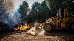 Ακραίος κίνδυνος εκδήλωσης και εξάπλωσης πυρκαγιών το Σάββατο - Χάρτες
