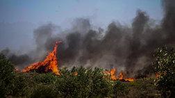 Κυριακή, η πιο επικίνδυνη ημέρα για πυρκαγιά - Σε συναγερμό οι αρχές