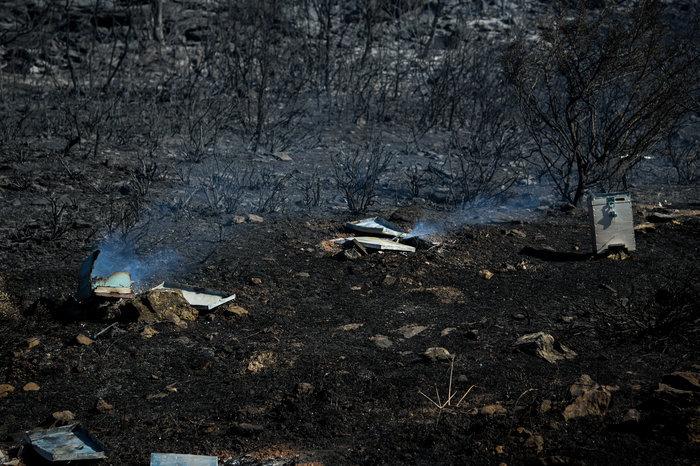 Κυριακή, η πιο επικίνδυνη ημέρα για πυρκαγιά - Σε συναγερμό οι αρχές - εικόνα 3
