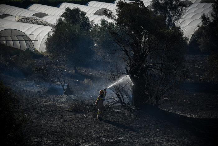 Κυριακή, η πιο επικίνδυνη ημέρα για πυρκαγιά - Σε συναγερμό οι αρχές - εικόνα 2