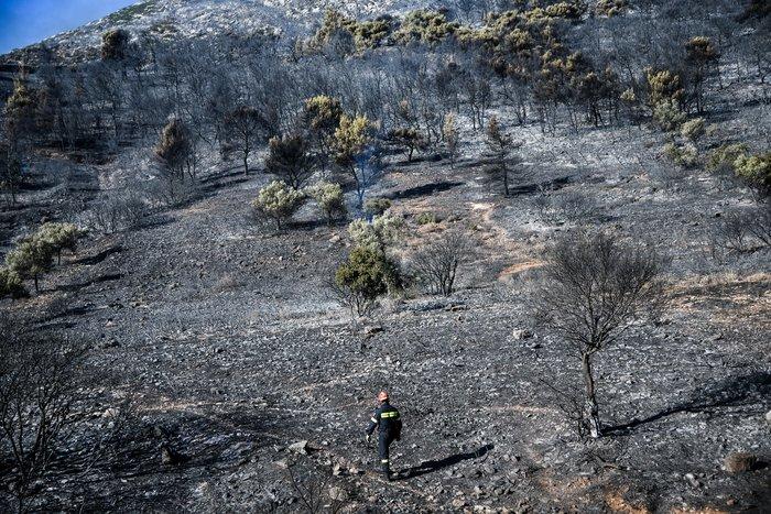 ΓΓ Πολιτικής Προστασίας : «Τεράστιο το μέτωπο με 20 μέτρα φλόγα»