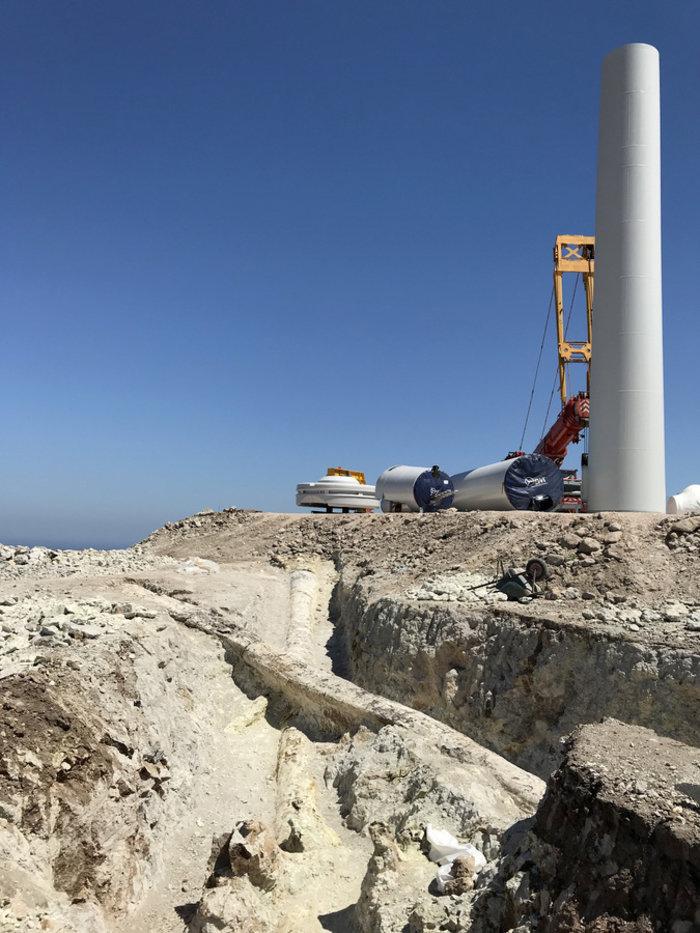 Μυτιλήνη: Γιγάντιοι κορμοί απολιθωμένων κωνοφόρων αποκαλύφθηκαν σε ανασκαφή