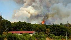 Τρεις νέες φωτιές σε Μεσσηνία και Αρτα - Μεγάλη επιχείρηση