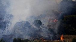 Μαίνεται η φωτιά στην Εύβοια-Εκκένωση του χωριού Μακρυμάλλη