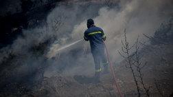 Κρίσιμη η κατάσταση στο Πρόδρομο Θηβών- H φωτιά κινείται με μεγάλη ταχύτητα