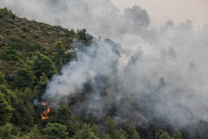 Δάσος καίγεται στην Εύβοια-έτοιμα για εκκένωση δύο χωριά
