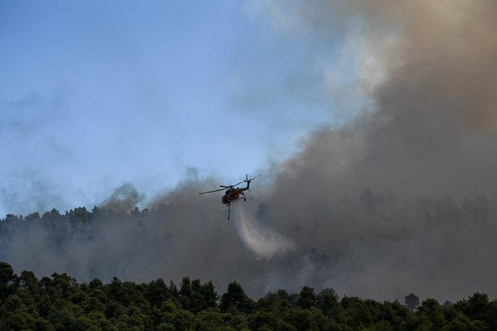 Εύβοια: Στα σπίτια του χωριού Μακρυμάλλη ο πύρινος εφιάλτης - εικόνα 5