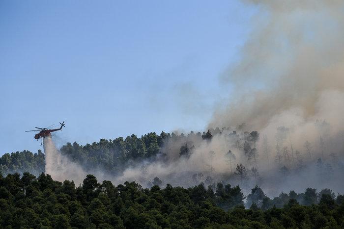 Δάσος καίγεται στην Εύβοια-έτοιμα για εκκένωση δύο χωριά - εικόνα 3