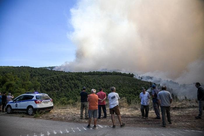 Δάσος καίγεται στην Εύβοια-έτοιμα για εκκένωση δύο χωριά - εικόνα 4