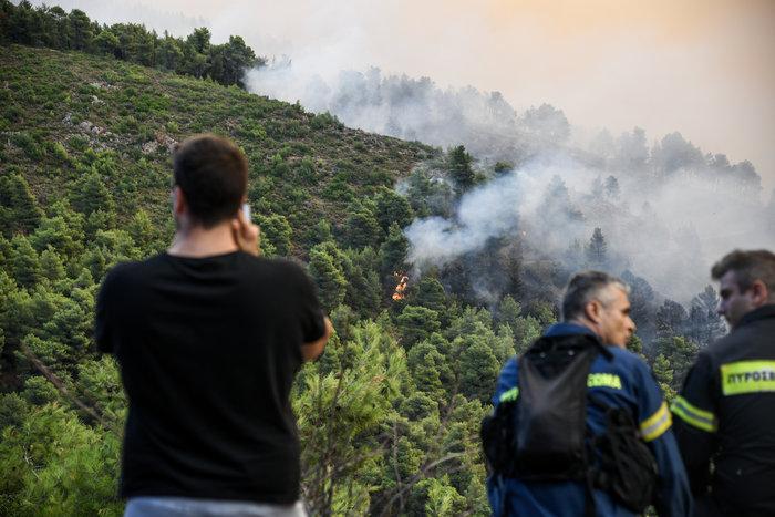 Καρέ καρέ η μάχη των πυροσβεστών στην Εύβοια - εικόνα 2
