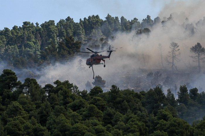 Καρέ καρέ η μάχη των πυροσβεστών στην Εύβοια - εικόνα 3