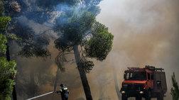 Προς τον Κορινθιακό Κόλπο κινείται η φωτιά της Θήβας