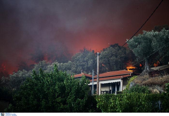 Εύβοια: Στα σπίτια του χωριού Μακρυμάλλη ο πύρινος εφιάλτης - εικόνα 9