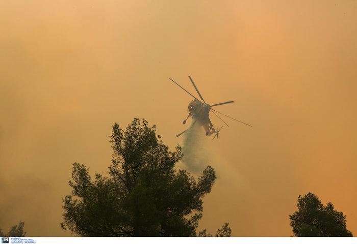 Εύβοια: Στα σπίτια του χωριού Μακρυμάλλη ο πύρινος εφιάλτης - εικόνα 11