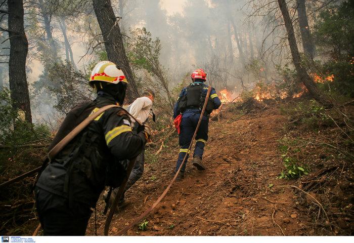 Εύβοια: Στα σπίτια του χωριού Μακρυμάλλη ο πύρινος εφιάλτης - εικόνα 12
