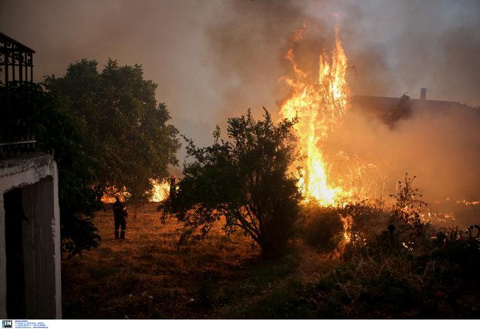 Εύβοια: Στα σπίτια του χωριού Μακρυμάλλη ο πύρινος εφιάλτης - εικόνα 6
