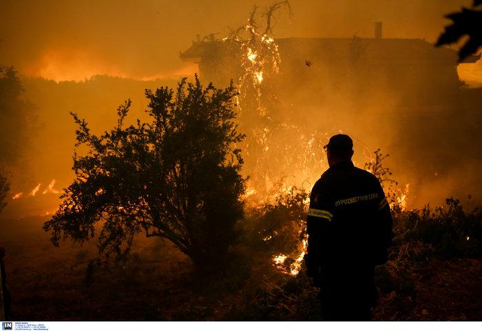 Εύβοια: Στα σπίτια του χωριού Μακρυμάλλη ο πύρινος εφιάλτης - εικόνα 7