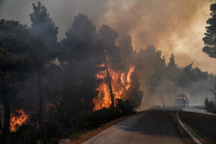 Νύχτα-κόλαση για την Εύβοια-Ολονύχτια μάχη με τις φλόγες - εικόνα 3