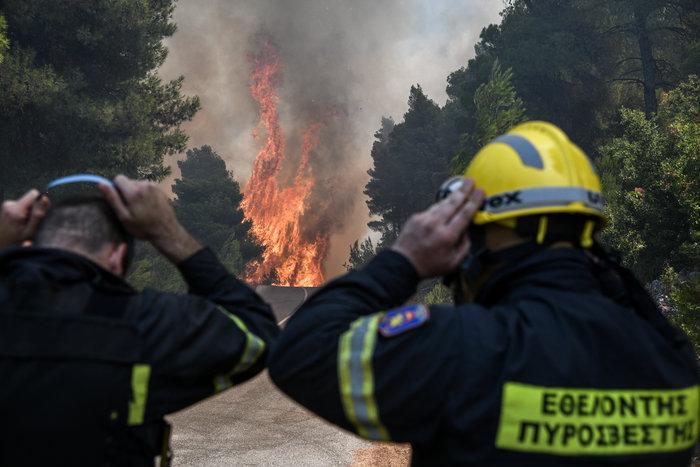 Νύχτα-κόλαση για την Εύβοια-Ολονύχτια μάχη με τις φλόγες - εικόνα 5