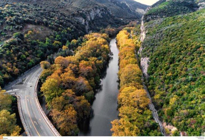 Τα 19 αισθητικά δάση της χώρας-Τι είναι αισθητικό δάσος (εικόνες) - εικόνα 3