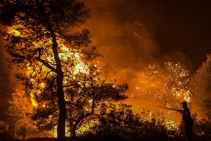 Τεράστια οικολογική καταστροφή, μάχη με τις αναζωπυρώσεις στην Εύβοια - εικόνα 5