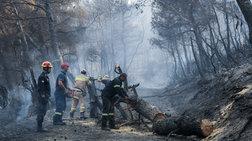 Τεράστια οικολογική καταστροφή, μάχη με τις αναζωπυρώσεις στην Εύβοια