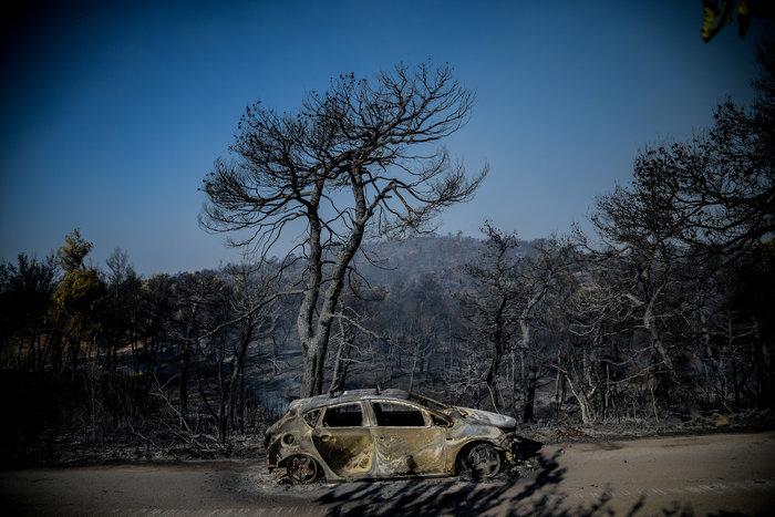 Τεράστια οικολογική καταστροφή, μάχη με τις αναζωπυρώσεις στην Εύβοια - εικόνα 7