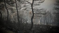 Πολύ υψηλός κίνδυνος πυρκαγιάς και ανήμερα του Δεκαπενταύγουστου
