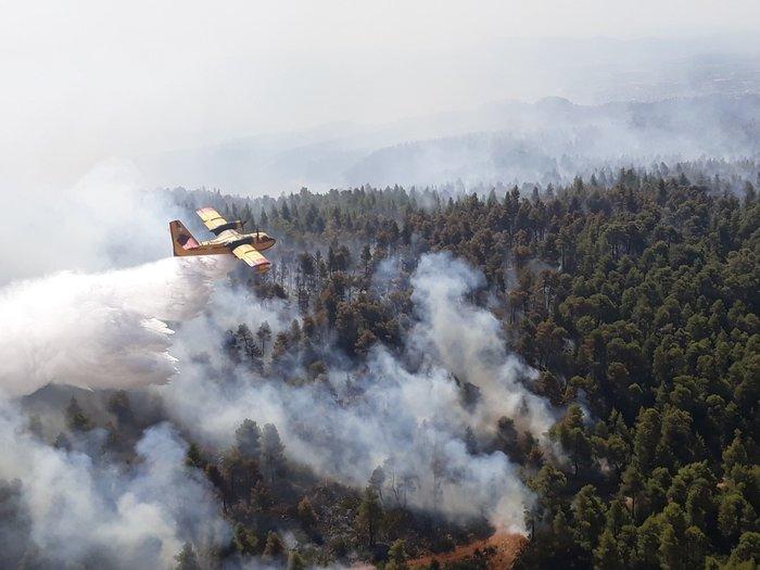 Φωτιά στην Εύβοια: Η αντιμετώπιση των αναζωπυρώσεων βασικός στόχος - εικόνα 3