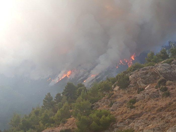 Φωτιά στην Εύβοια: Η αντιμετώπιση των αναζωπυρώσεων βασικός στόχος - εικόνα 4