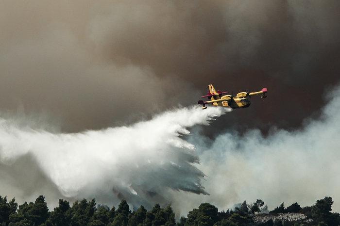 Εύβοια: Δεύτερη νύχτα μάχης με τις φλόγες-Επεσαν οι άνεμοι - εικόνα 3