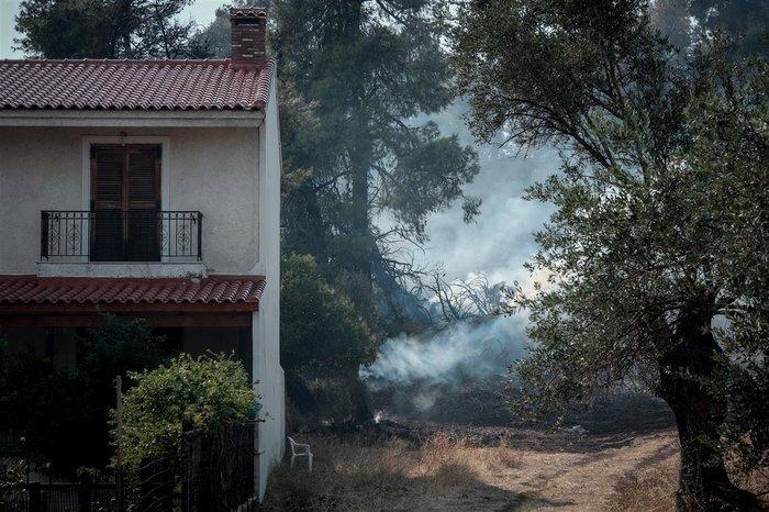 Τρίτη ημέρα μάχη με τις φλόγες στην Εύβοια, σε χαράδρα η φωτιά - εικόνα 5