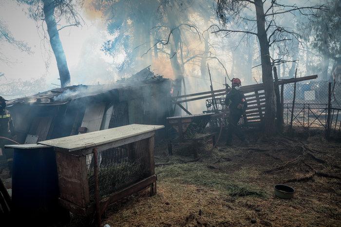Τρίτη ημέρα μάχη με τις φλόγες στην Εύβοια, σε χαράδρα η φωτιά - εικόνα 3