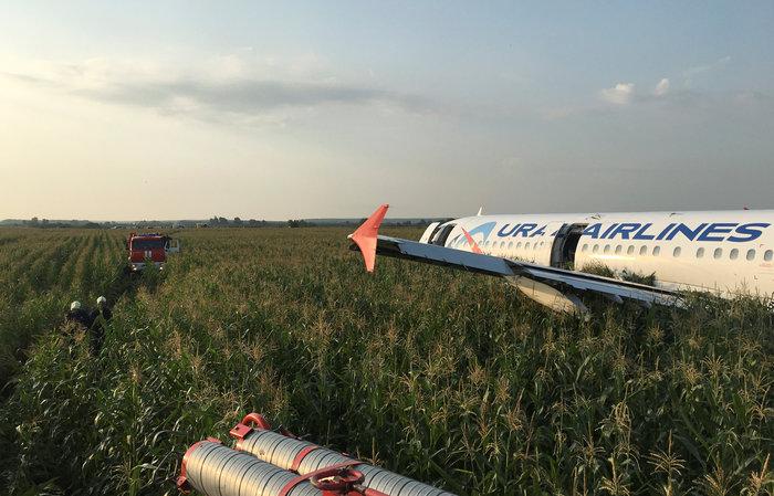 Αναγκαστική προσγείωση σε χωράφι σε πτήση με 233 επιβαίνοντες - εικόνα 2
