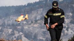 Οι πυροσβέστες στην Εύβοια δαμάζουν τις φλόγες για να σώσουν [Εικόνες]