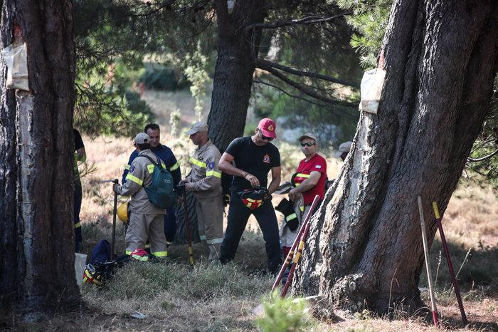 Οι πυροσβέστες στην Εύβοια δαμάζουν τις φλόγες για να σώσουν [Εικόνες] - εικόνα 2