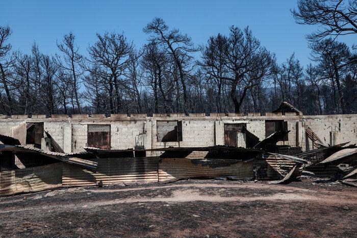 Εύβοια: Χωρίς ενεργό μέτωπο η φωτιά- Oι ενδείξεις εμπρησμού - εικόνα 5