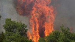 Συναργεμός στην Κέρκυρα-Πυρκαγιά σε περιοχή Natura