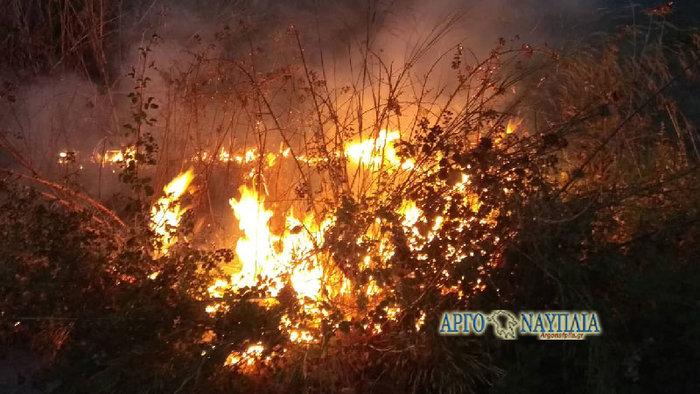 Φωτιά στη Νέα Κίο με δύο εστίες (βίντεο)