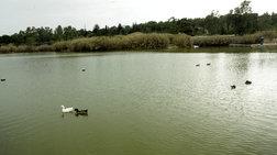 xatzidakis-mesa-ston-septembri-lusi-gia-to-parko-tritsi