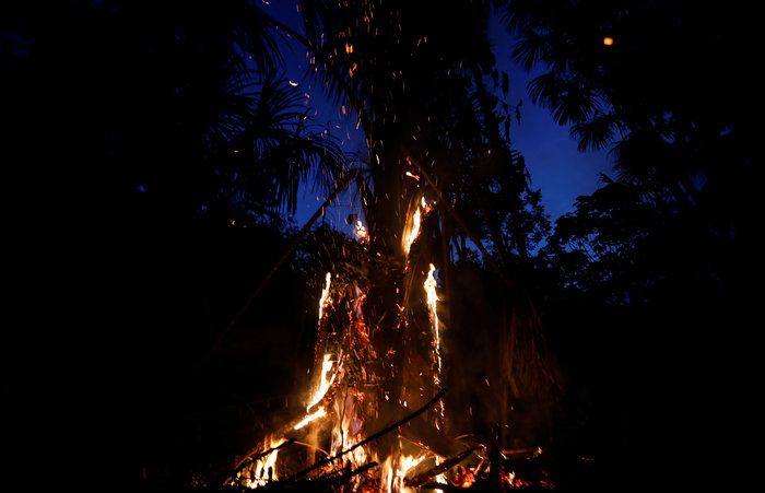 Ο Αμαζόνιος στις φλόγες- Παγκόσμια κραυγή αγωνίας - εικόνα 2