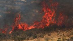 Πυρκαγιά σε δασική έκταση στον Ασπρόπυργο και στη Βάρδα Ηλείας